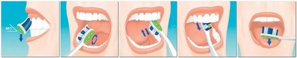 На фото показано как правильно чистить зубы