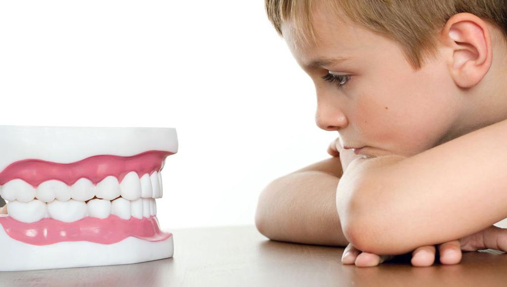 Какое количество зубов должно быть у детей?