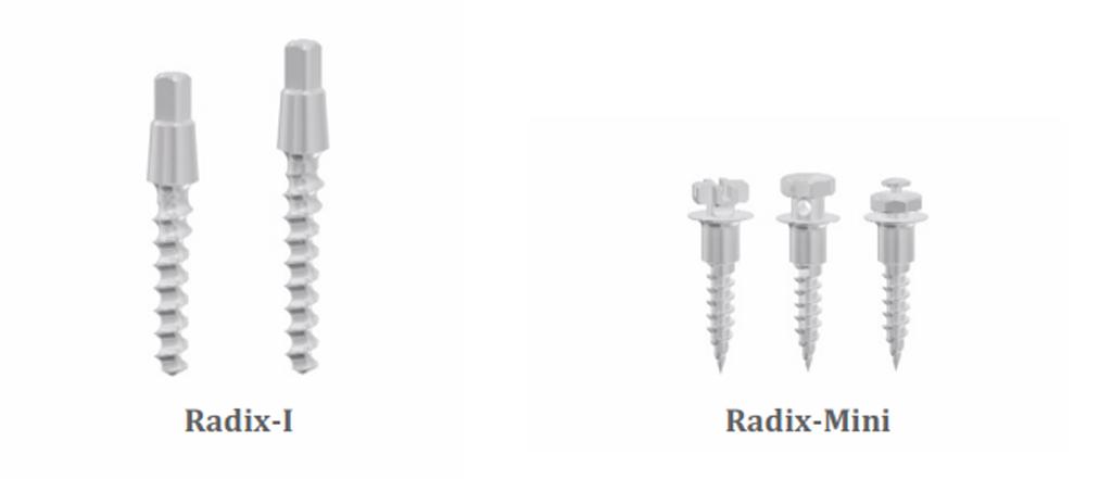 Radix-Mini и Radix-I